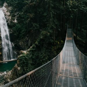 cascade-falls-bridge-01-priscilla-du-preez